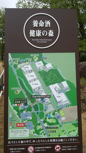 T201505 SHINSYUU14